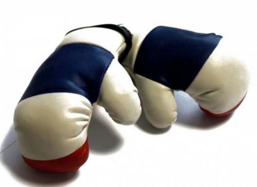Mini Boxhandschuhe - Frankreich