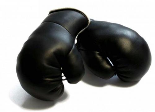 Mini Boxhandschuhe - Schwarz