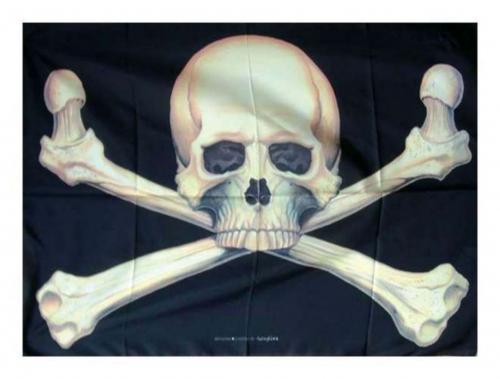 Posterfahne Totenkopf   URPS112