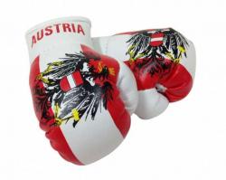 Mini Boxhandschuhe Österreich