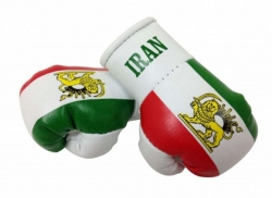 Mini Boxhandschuhe Iran