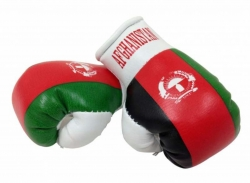 Mini Boxhandschuhe Afghanistan