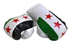 Mini Boxhandschuhe Syrien
