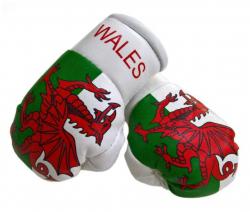 Mini Boxhandschuhe Wales