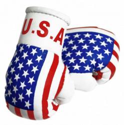 Mini Boxhandschuhe - USA