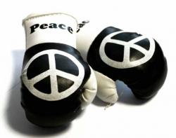 Mini Boxhandschuhe - Peace