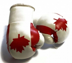 Mini Boxhandschuhe - Kanada