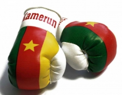 Mini Boxhandschuhe - Kamerun