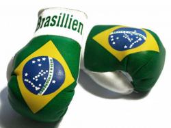 Mini Boxhandschuhe - Brasilien