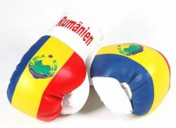Mini Boxhandschuhe - Rumänien