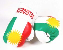 Mini Boxhandschuhe - Kurdistan