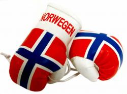 Mini Boxhandschuhe - Norwegen