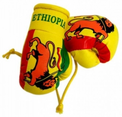 Mini Boxhandschuhe - Äthiopien