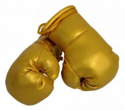Mini Boxhandschuhe - goldene Farbe