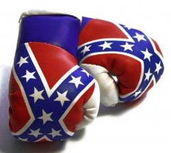 Mini Boxhandschuhe - Südstaaten