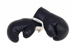 Mini Boxhandschuhe - Schwarz Weiß