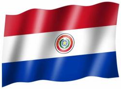 Fahne Paraguay