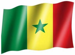 Fahne Senegal