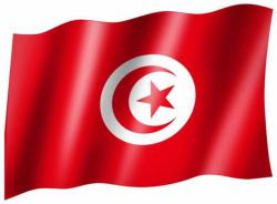 Fahne Tunesien