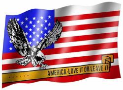 Fahne USA Adler | 143