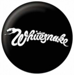 Ansteckbutton Whitesnake | 1332
