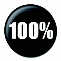 Ansteckbutton 100%   4231