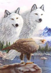 3D Poster - Wölfe und Adler