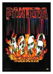 Posterfahne Pantera | 064